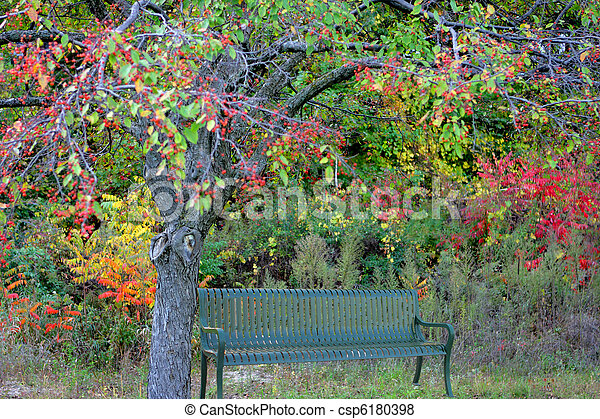 公園のベンチ - csp6180398