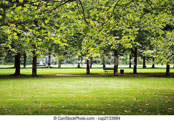 公園 - csp2133984
