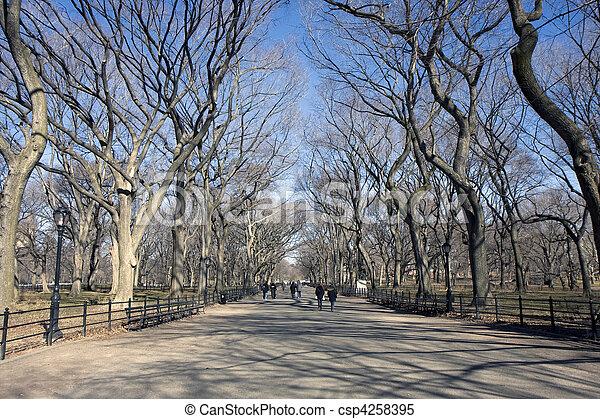 公園, 中央である - csp4258395