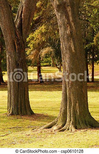 公園 - csp0610128