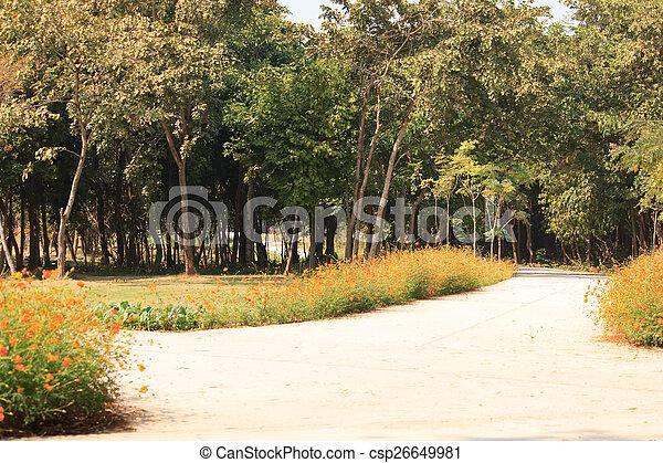 公園 - csp26649981