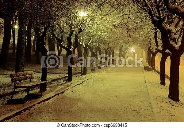 公園, 冬天, 夜晚 - csp6638415