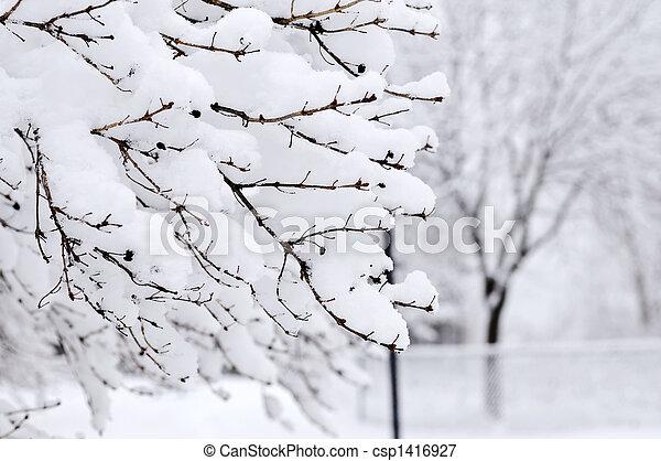 公園, 冬 - csp1416927