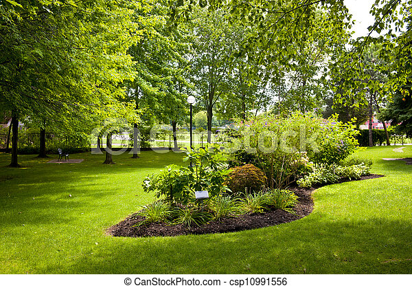 公園, 庭 - csp10991556