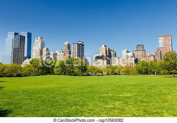 公園, 日当たりが良い, 中央である, 日 - csp10563082