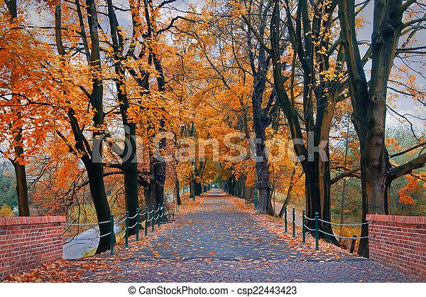 公園, 秋 - csp22443423