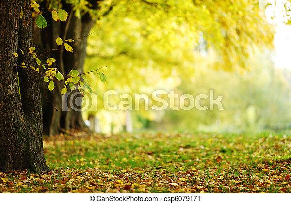 公園, 秋 - csp6079171