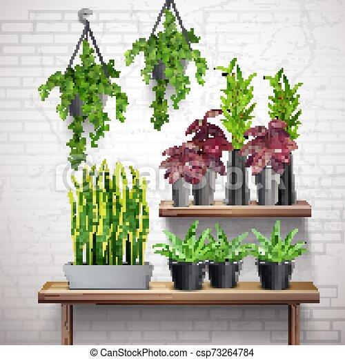 内部, 植物, 家, 現実的 - csp73264784