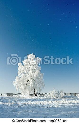 冬の景色 - csp0982104