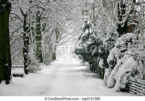 冬天 - csp0121585