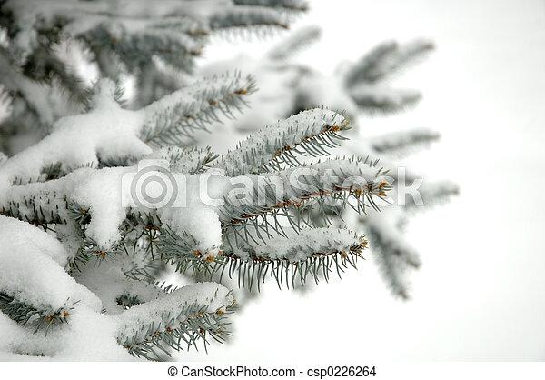 冬天 - csp0226264