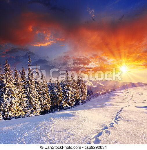 冬天 - csp9292834