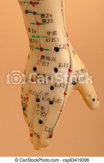 刺鍼術, モデル, 手 - csp63419396