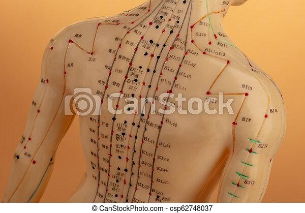 刺鍼術, モデル, 背中 - csp62748037