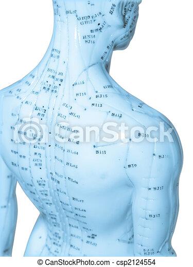 刺鍼術, 概念 - csp2124554