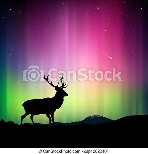 前景, 鹿, 北 ライト - csp12822101