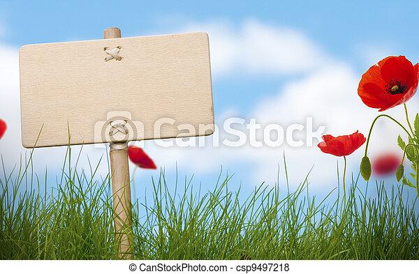 印, ケシ, テキスト, 青い空, 草, 木製である, 花, 緑, 雲, ブランク, 部屋, ぼんやりさせられた - csp9497218