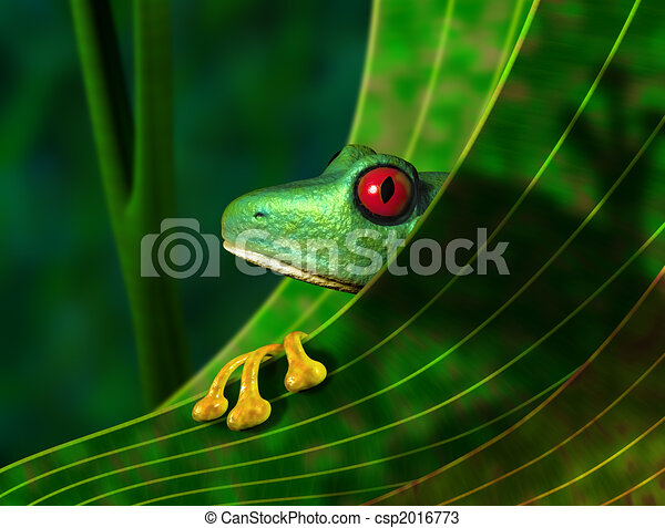 危害, 樹青蛙, 雨林 - csp2016773