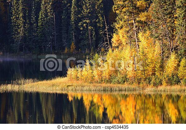 反映, 北方, saskatchewan, 玉, 湖水 - csp4534435