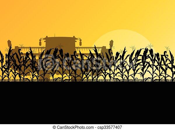 収穫機, トウモロコシ, 黄色, 秋, フィールド, ベクトル, コンバイン, 田園, 抽象的, 収穫する - csp33577407