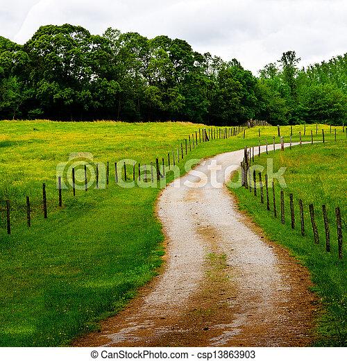 国, とげがある, 道, wi, 巻き取り - csp13863903