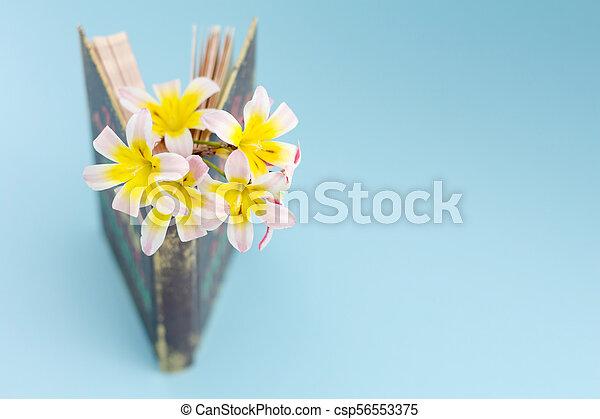 地位, 開いた, カラフルである, 春, 花, バックグラウンド。, inbetween, クローズアップ, book/diary, わずかに, ページ - csp56553375