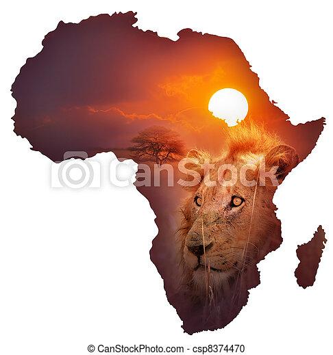 地図, 野生生物, アフリカ - csp8374470