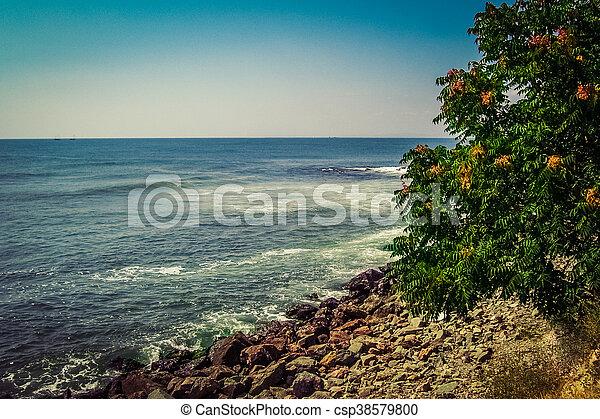 夏天, 海, 背景。 - csp38579800