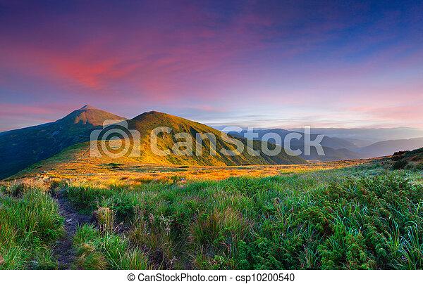 夏天, 风景, 山., 日出, 色彩丰富素材照片