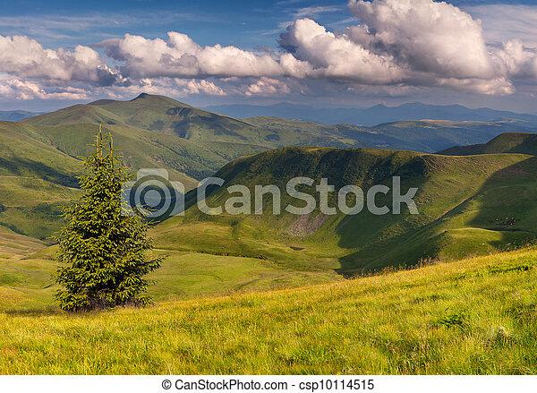 夏天, 风景, 色彩丰富的山