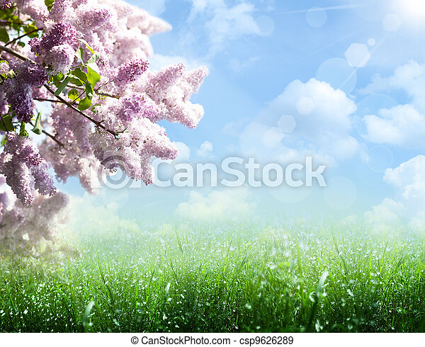 夏, ライラック, 木, 抽象的, 背景, 春 - csp9626289