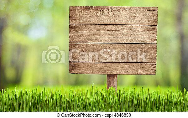 夏, 庭, 木製である, 公園, 印, 森林, ∥あるいは∥ - csp14846830