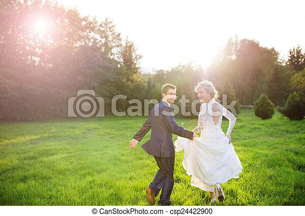夏, 恋人, 結婚式, 牧草地, 若い - csp24422900