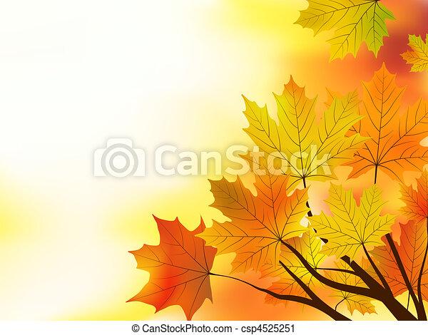 多彩色, 离开, 背景。, 落下, 枫树 - csp4525251