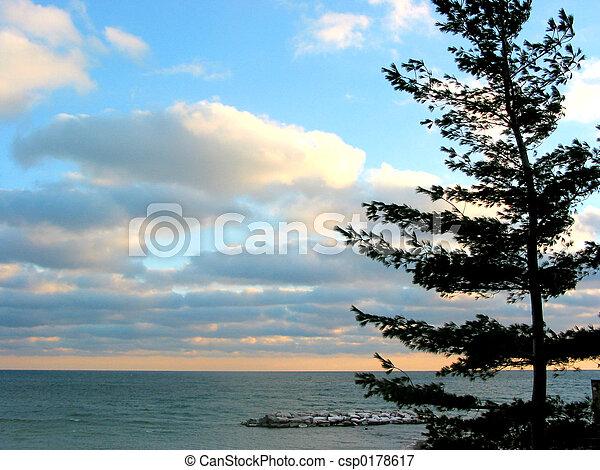 天空, 松樹, 傍晚, 海 - csp0178617