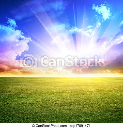 天空, 綠色的草地 - csp17091471