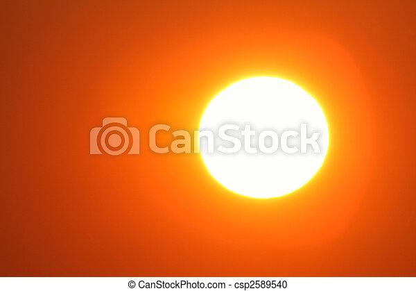 太陽 - csp2589540