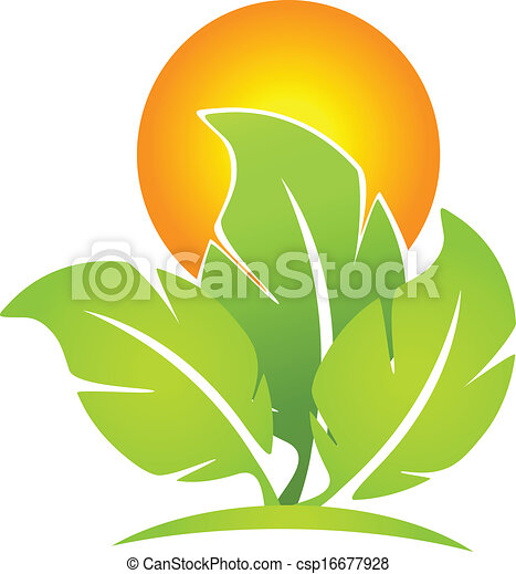 太陽, 緑, eco-leafs, ロゴ - csp16677928