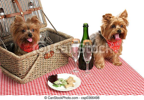 子犬, ピクニック - csp0366498