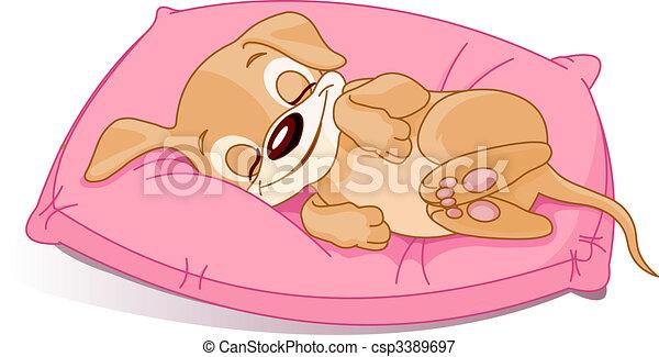 子犬, 睡眠 - csp3389697
