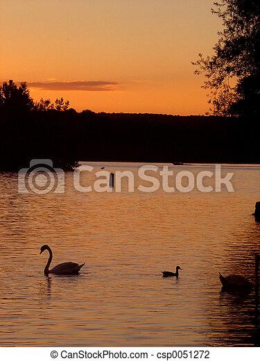 安大略, 日落, 湖 - csp0051272