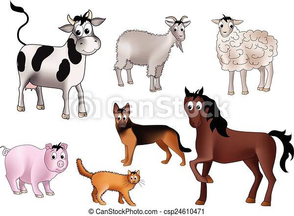 家畜 - csp24610471