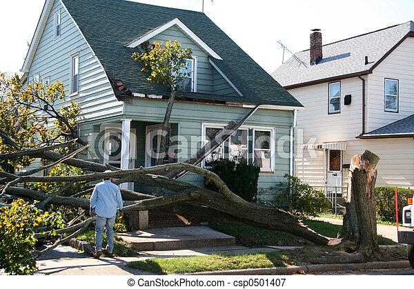 家, 傷つけられる, 木 - csp0501407