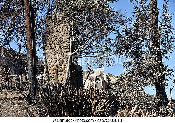 家, 破壊された, 山火事 - csp75302613