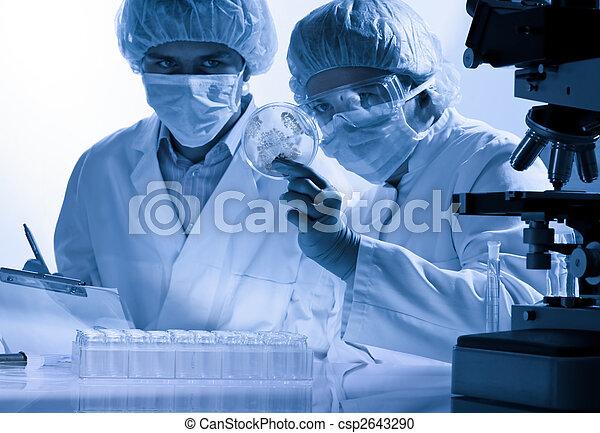 實驗室 - csp2643290