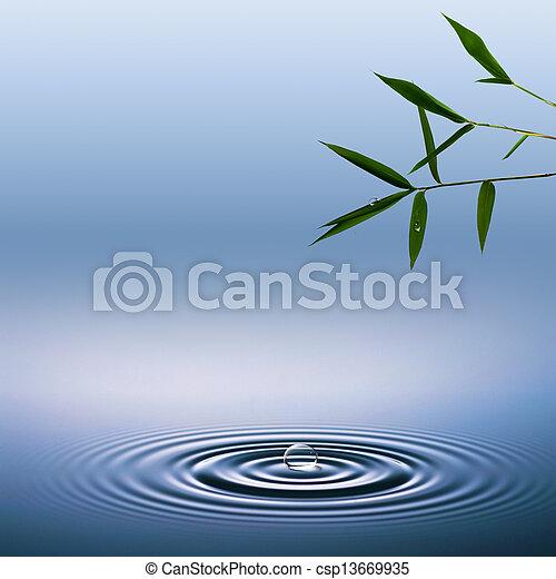 小滴, 抽象的, 背景, 水, 環境, 竹 - csp13669935