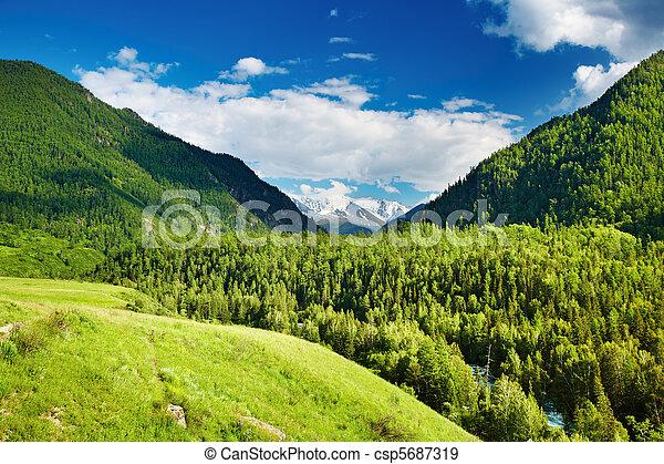 山地形 - csp5687319