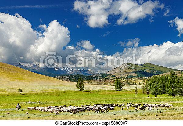 山地形 - csp15880307