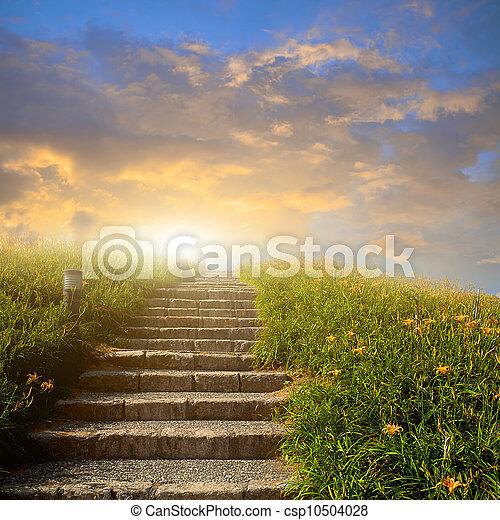 山, はしご, 花, 牧草地 - csp10504028