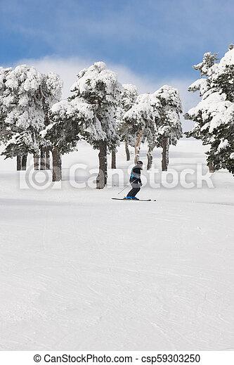 山, 冬, 人々, slope., 森林, スキーの白, 景色。 - csp59303250